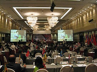 ICAPP Conference on Natural Disasters and Environmental Protection
