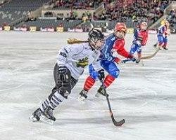 220px-Antiek_hockey Hockey
