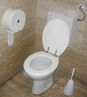 Toilet with flush water tank