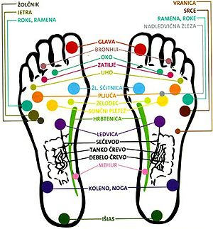 English: Reflexology on feet