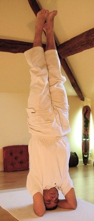 Yoga postures Shirshasana