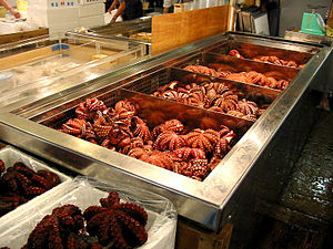 Octopuses for sale in Tsukiji fish market, in ...