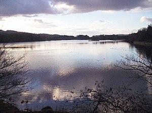 Scottish Wildlife Trusts Balgavies Loch.