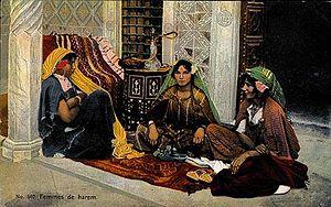 557 - Harem women.