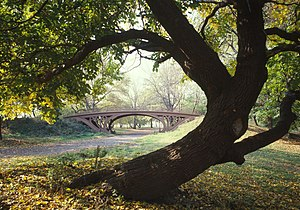 English: Central Park Bridges (view from Bridl...
