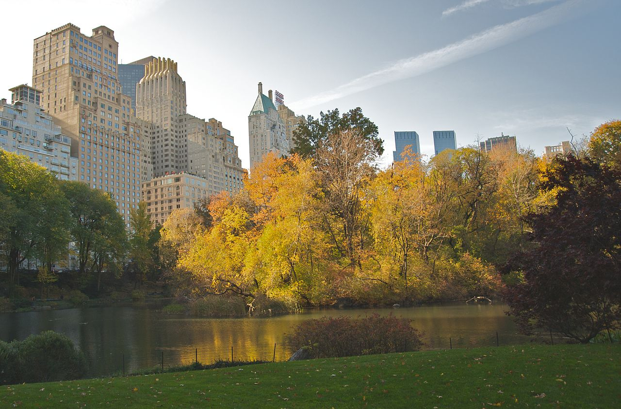 File Central Park During Autumn Nyc Jpg Wikimedia Commons