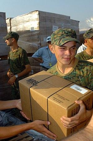 US Navy 080822-M-3376J-002 Georgian soldiers, ...