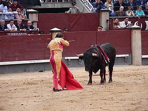 Matador in the tercio de muerte