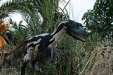 Velociraptor mongoliensispor S.Rabito 2010