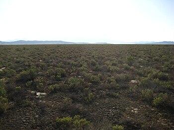 Desolate Landscape.