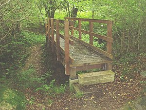 Footbridge over the stream. Deep in the woods ...
