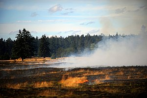Fort Lewis prairie and grassland smolders afte...