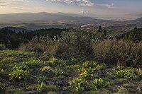 My Public Lands Roadtrip- Cascade-Siskiyou National Monument in oregon (18908781818). Jpg