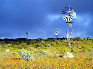 Wind mills in Namaqualand, Northern Cape