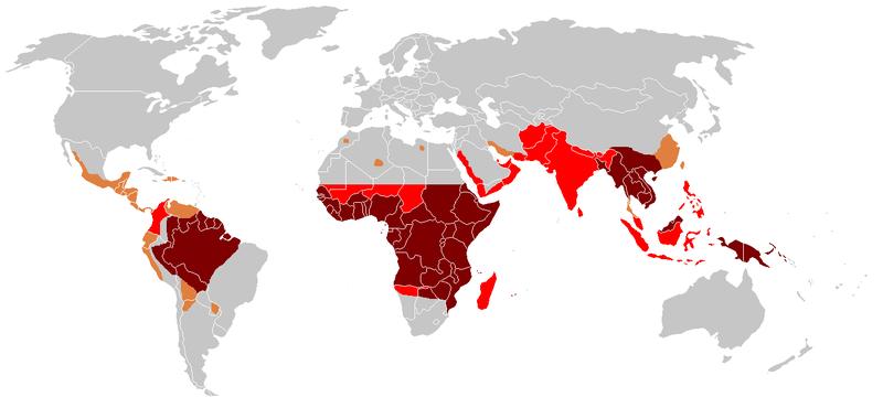 Pays concernés par le paludisme (malaria)