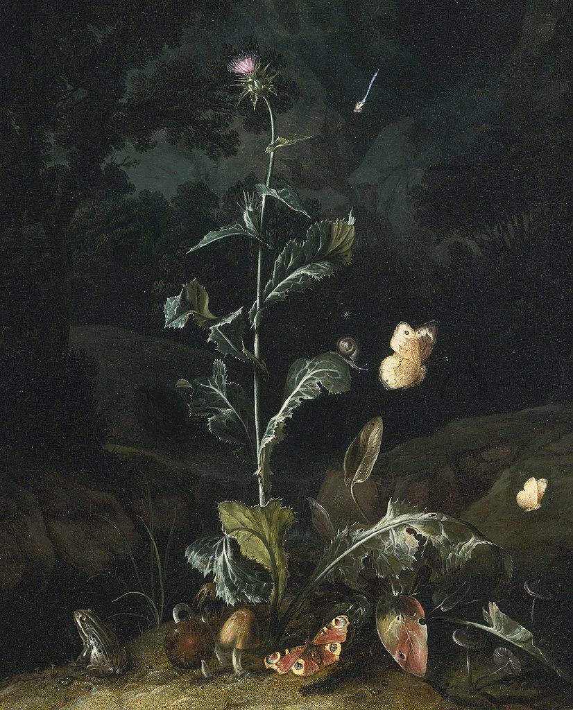 After talking about what animals live in the jungle, ask the children to draw and cut out three or more animals that live in the jungle. File Otto Marseus Van Schrieck Forest Floor Still Life With Flowers And Animals 1671 Jpg Wikimedia Commons