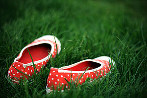Photo of a pair of shoes in the grass.