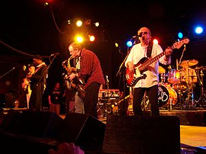 English: The Average White Band performs in Ro...