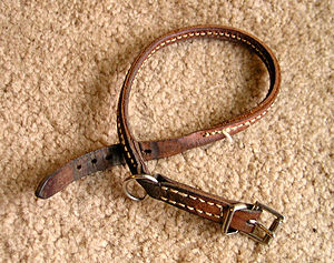 English: buckle collar taken by Elf