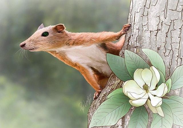 El papel del Purgatorius en la evolución de los primates