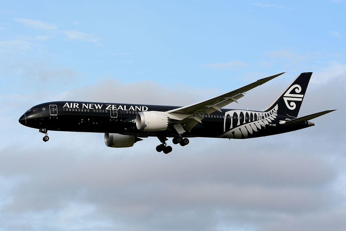 Image result for Air New Zealand