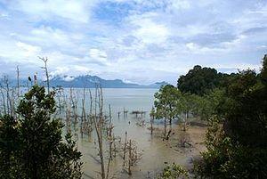 Baku National Park, Borneo, Malaysia