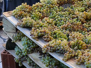 Grapes, left to dry for a passito wine, at Mar...