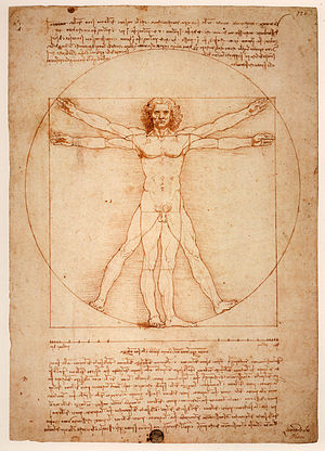 English: Vitruvian Man, Gallerie dell'Accademi...
