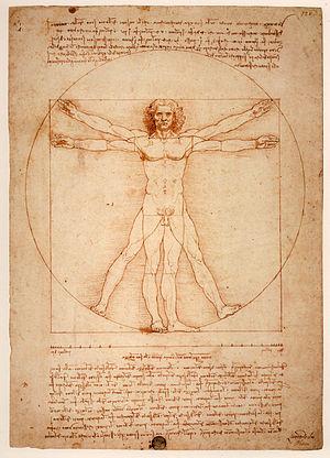 English: Vitruvian Man, Gallerie dell'Accademi...