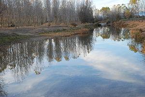 English: View of Valdavia river on Villamelend...