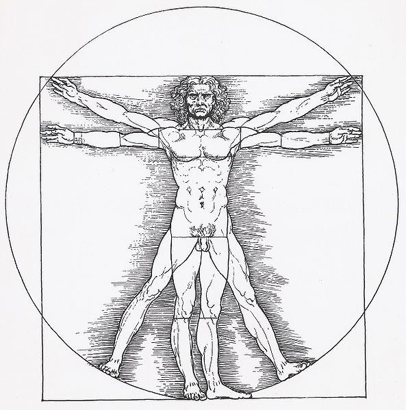 File:Vitruvianischer Mann.jpg
