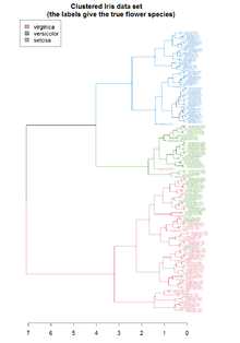 Hierarchical clustering using R | MarkTechPost
