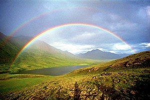 Alaska, Arctic National Wildlife Refuge, Canni...