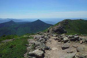 English: View of Franconia Ridge Trail looking...