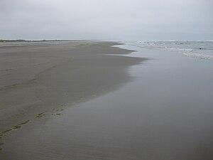 The beach at Long Beach Peninsula, WA, and the...