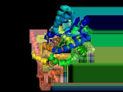 Image result for cryptochrome