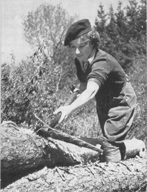 A member of the Women's Timber Corps stripping bark from a felled tree to be used as a telegraph pole