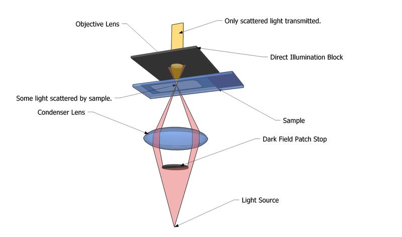 File:Dark Field Microscope.png