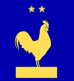 France home kit 2008 cock
