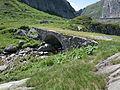 Saumwegbrücke vor der Gotthardpasshöhe