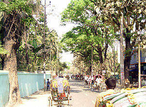 English: Puroshobha Road, from Comilla central...