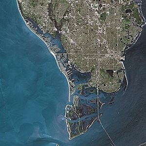 St. Petersburg (Florida) by SPOT Satellite