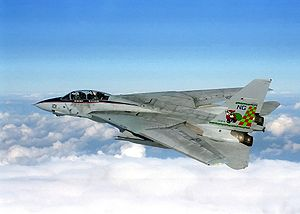 Tomcat on patrol