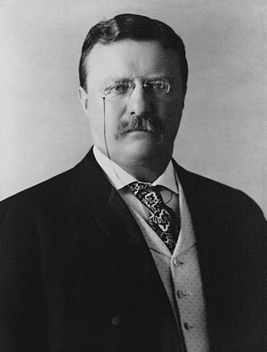 President of the United States Theodore Roosev...