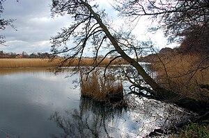 A serene landscape photography