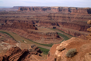 View on Colorado River from Dead Horse Point O...