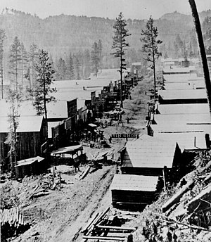 A photograph of Deadwood in 1876. General view...