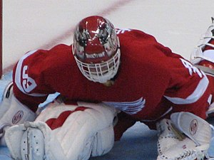 Photo of Dominik Hasek of the Detroit Red Wings