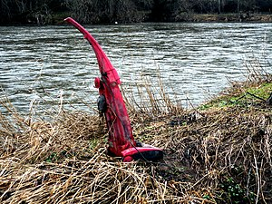 English: Spring Cleaning on the River Teviot T...