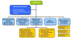Español: aprendizaje neurociencias